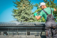 Roof Cleaning & Moss Removal Bromley