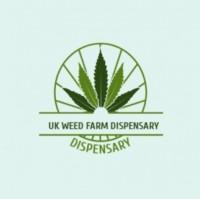 UK WEED FARM DISPENSARY