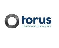 Torus Surveyors Ltd