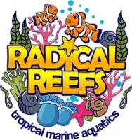 Radical Reefs Leeds Marine Superstore