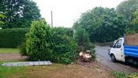 L Harris Garden & Property Maintenance