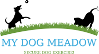 My Dog Meadow