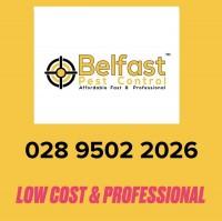 Belfast Pest Control