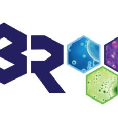 3R Regenerative Repair & Relief