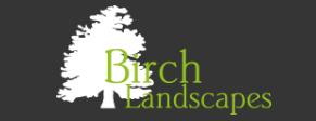 Birch Landscapes