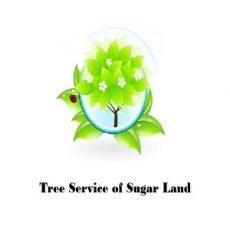 Tree Service of Sugar Land