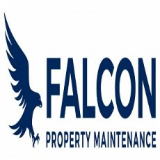 FALCON PROPERTY MAINTENANCE LIMITED